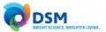 DSM Nederland